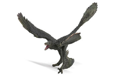 Collecta dinosaurus Microraptor junior 20 cm rubber donkergroen
