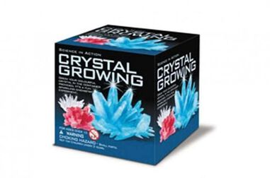4M SCIENCE IN ACTION: CRYSTAL GROWING
