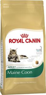 Kattenvoer Droogvoer kat maine coon adult 4 kg Royal Canin